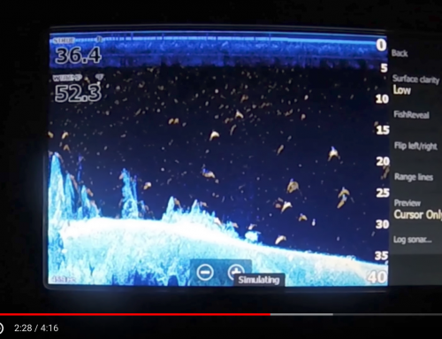 Lowrance Sonar Fish Reveal Update -Step By Step – Elite ti